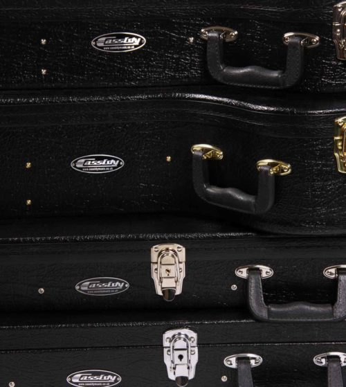 Cassidy guitars supplies a range of quality hard cases, gig bags and accessories