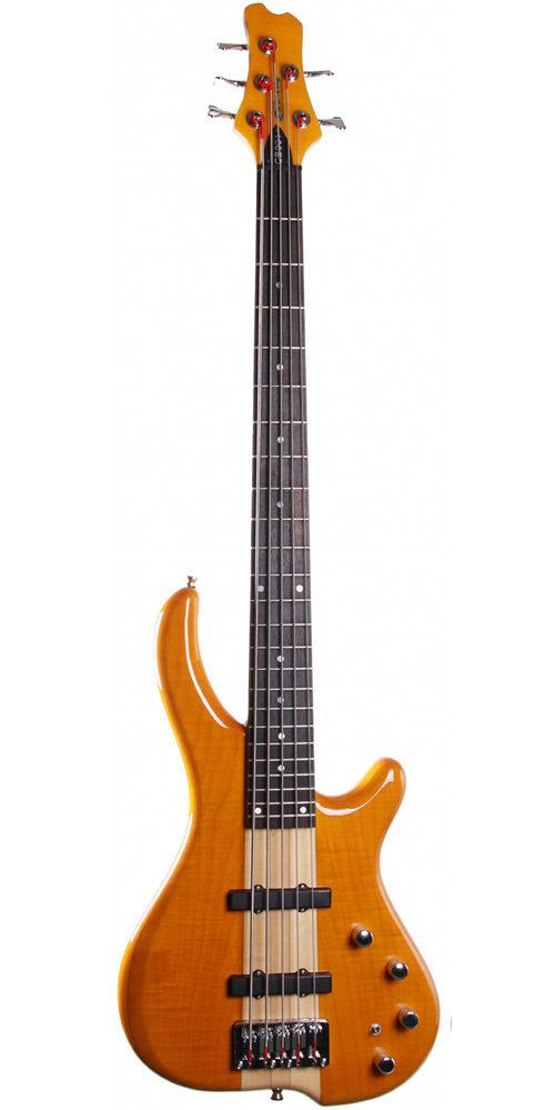 Cassidy guitars 5 string bass guitar